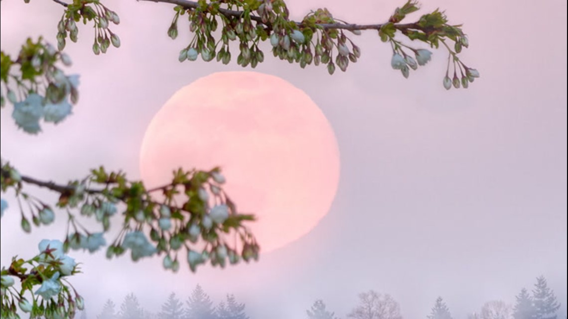 Catch the Super 'Pink' Moon on April 26