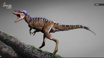 Scientists Discover A Tiny T. Rex Relative Dubbed the 'Harbinger of Doom'
