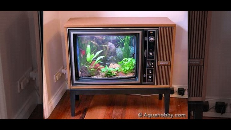 636625207914666012-turn-old-tv-into-sweet-fish-tank.1280x600.jpg
