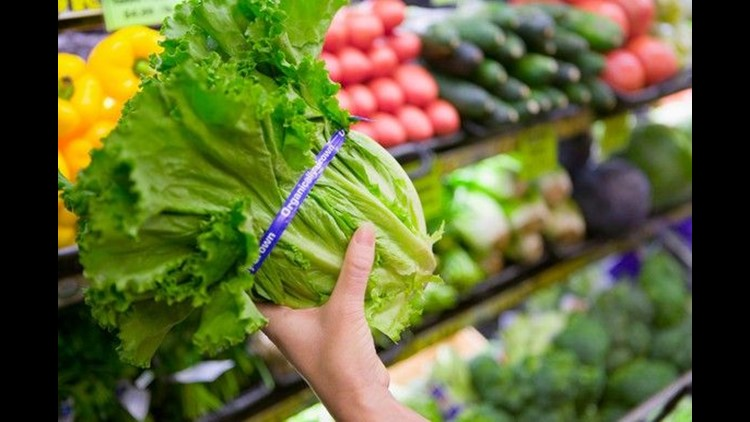 close-up-of-organic-lettuce-in-grocery-store_large.jpg