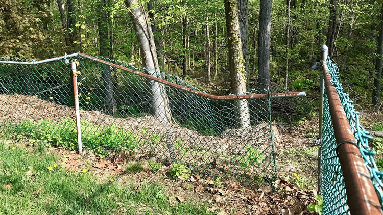A black bear breaks down a fence on the way to a family's basement in Rockaway Township, N.J. in April.