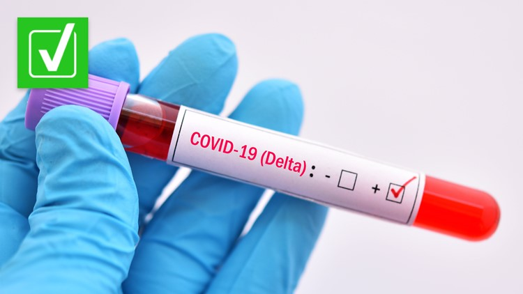 Yes, a fully vaccinated person exposed to the Delta variant could transmit COVID-19 to others