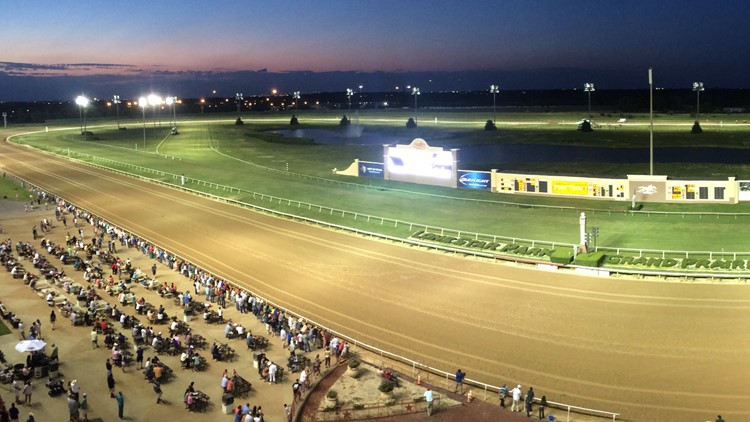 Horse euthanized after collapsing during race Saturday at