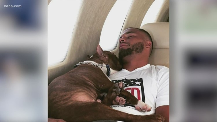 Image result for Dak Prescott and his pit bull