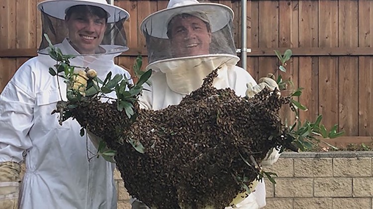 Rainey Rogers (right) holds a massive beehive he removed with his son.