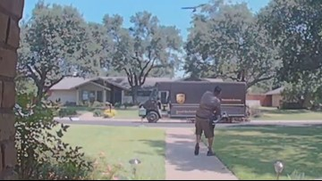 Videos capture dive-bombing birds chase away visitors, homeowners at North Dallas house