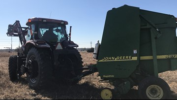 Income down 50 percent for North Texas farmer: 'It's almost a crisis in the ag economy'