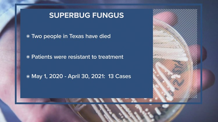 'Superbug' fungus spread in 2 Collin County hospitals, state health department says