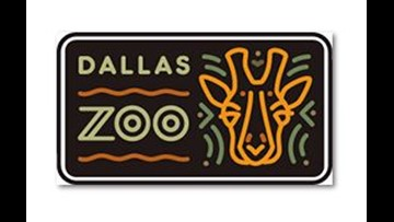 Community First Day at The Dallas Zoo