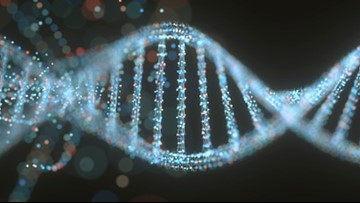At-home DNA kits: popular gifts with privacy considerations