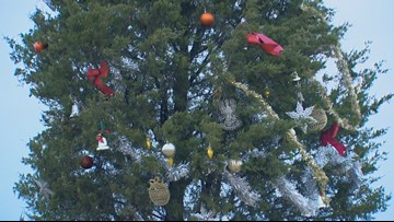 Mystery Christmas tree stands alone in Prosper