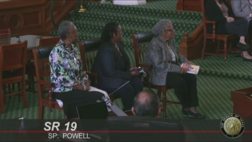 State Senate honors 'Grandmother of Juneteenth,' Opal Lee with portrait