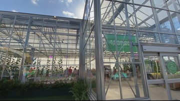State Fair of Texas Greenhouse: behind the scenes