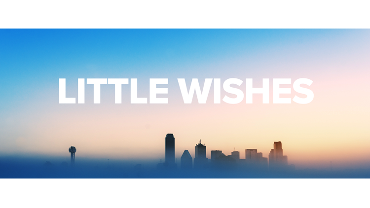 Nominate someone deserving for a 'Little Wish'