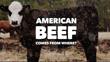 Verify: Calling it American beef doesn't mean it's from America