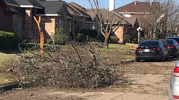 Trees down in Mesquite neighborhood