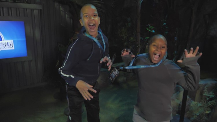 Wednesday's Child: These sweet brothers will light up your life
